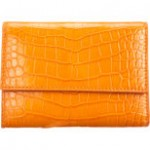 Zagliana's Orange Wallet!