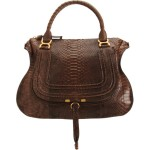 The Right Bag Can Make You Feel Great! Enter…Chloe's Python Satchel