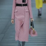Miu-Miu-leather-runway-stripe-bag