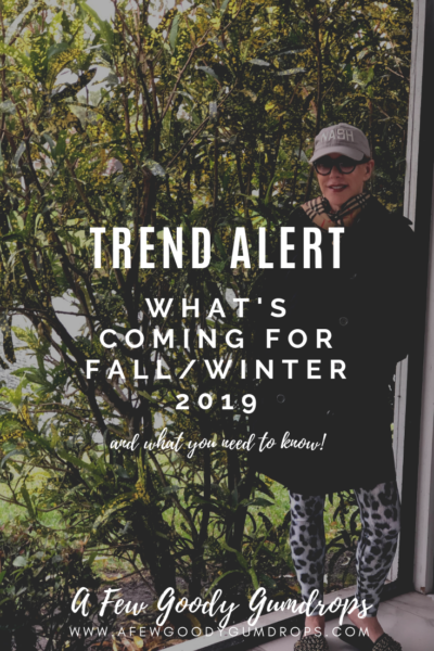 What's Coming For Fall/Winter 2019?